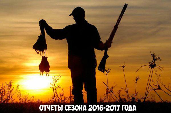 Отчеты сезона охоты 2016-2017