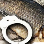 Кража на рыбалке